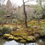 52878686 - このお庭を眺めながら湯豆腐をいただいた