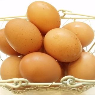 地元の安心・安全でハイクオリティーな食材を探求。(卵)