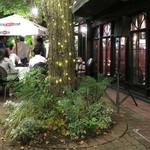 MLB Cafe Tokyo - 夜の M.L.B. テラス