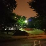 52912704 - 深夜の界隈公園、誰も居ないが中央に猫一匹。。。