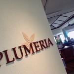 Plumeria Beach House -