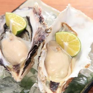 【新鮮魚介】料理長が厳選した産地直送の旬食材