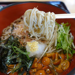 そば処 宇田川 - なめこおろしそばの蕎麦