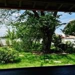 53043546 - 今日は、綺麗な庭園が見える窓側の席に案内された~♪(^o^)丿