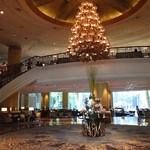 Lobby Lounge -