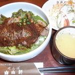 せんば自由軒 - ステーキ丼 2011/07