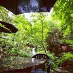 薬膳茶ソイビーンフラワー atきらら - テラス席にて滝を見ながら