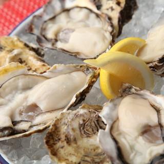 全国の漁場から取り寄せた新鮮な生牡蛎をご堪能下さい