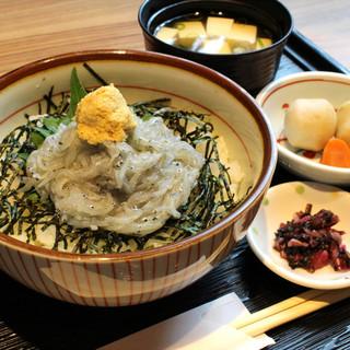 人気☆おすすめ御膳5種・生シラス丼