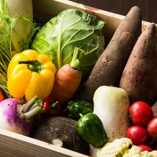 【体にやさしい野菜】がテーマ!