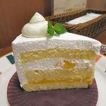 53309321 - マンゴーのショートケーキ