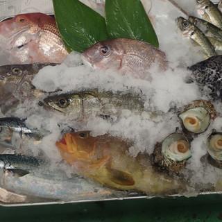 獲れ獲れピチピチの鮮魚を毎朝仕入れ提供