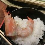 博多 魚市 - ぼたん海老
