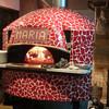 イタリアン食堂 ピザマリア - メイン写真: