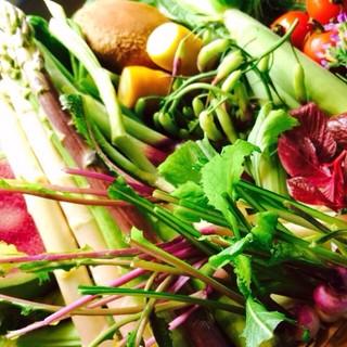 大地の恵み!旬の野菜たちからパワーをもらいましょう!