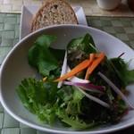 53491568 - 無農薬野菜のサラダ