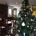 5351363 - クリスマスツリーが鎮座