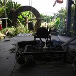 毘沙門茶屋 - 囲炉裏で焼いた焼魚