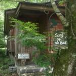 森のパスタ屋 ソング・オブ・ザ・バード - 店内