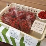 石窯焼 グラッチェ - 店舗前にはミニトマト、お買得‼︎