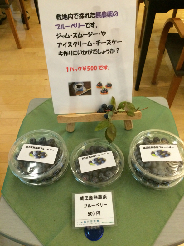 エール蔵王 島川記念館 喫茶コーナー