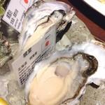 53751489 - 生牡蠣5種(ディテール)