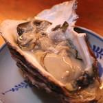 燗酒嘉肴 壺中 - 岩牡蠣