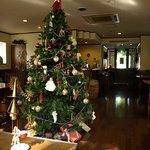 5377233 - クリスマスツリーが飾られています