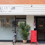 ADIANTUM -