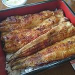田島食堂 - 料理写真:鰻重 特上 塩分控えめ