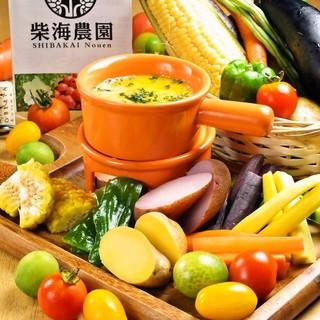 『本当に旨い野菜』畑直送!千葉県産有機野菜のバーニャカウダー