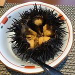 お宿 浜田館 - 料理写真:夕食:紫ウニ