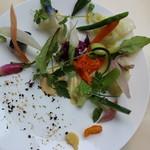 53852456 - 野菜の取り合わせ