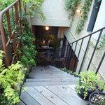 ラシーヌ - 階段を降りた地下にお店があります♪