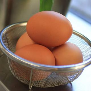 赤殻の新鮮な卵。