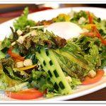 53912616 - フレッシュ野菜のエスニックサラダ