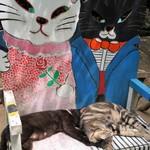 ネコノテパン工場 - おまけ・今春移転された「招き猫美術館」前のニャンコのベンチで仲良く寝ていたニャンコたち(2016.7.22)