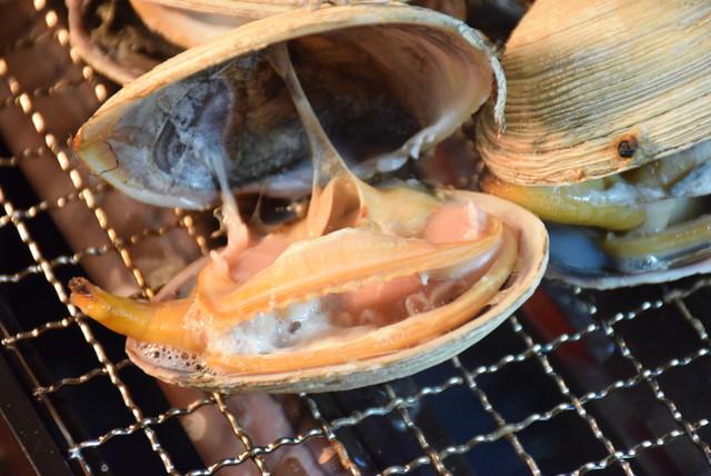 本場の蟹を堪能しよう!かに旅行の宿・旅館・温泉 …