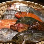 産地直送 お魚とお野菜 海畑 - 南房総沖での釣り魚!新鮮そのもの!!