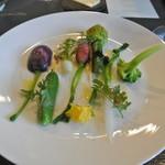 アキヒサ ハンダ - 芦別野菜の温サラダ 花ズッキーニと滝川産鴨肉