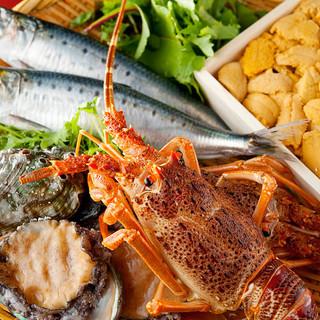 毎朝豊洲から仕入れる四季を彩る新鮮魚介