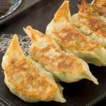 九州肉汁鉄板餃子