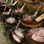 山文魚 - 本日の食材が並ぶ