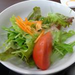54116543 - 「鹿野とんかつ定食」サラダ
