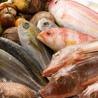 新鮮な魚介料理ならおまかせ
