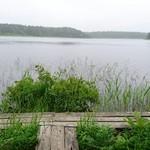 54197204 - 湖より神秘的な沼