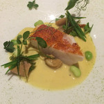54235521 - メインな魚料理