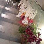 オールド フレイム - オープン記念でたくさんお花がお出迎え!愛されてるお店なんだね~