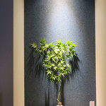 恵比寿 箸庵 - 涼しげなニッチの意匠