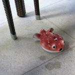 恵比寿 箸庵 - 可愛い金魚の香取〜♬